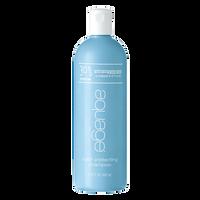 Color Protecting Shampoo Bonus Size