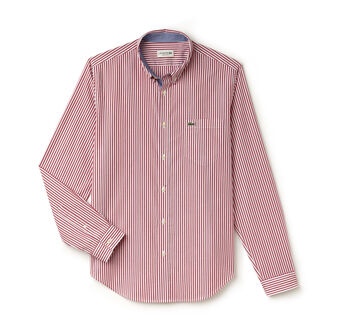 Men's Regular Fit Bengal Stripe Poplin Shirt