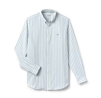 Men's Stripe Button Down Woven Shirt