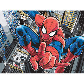 Spider-Man, Pencil by Number_73-91505