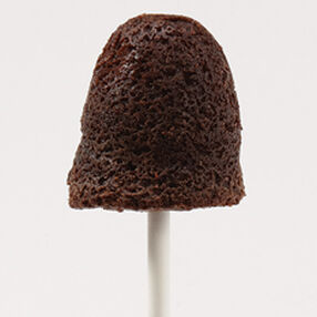 Wilton | Baking Brownie Pops